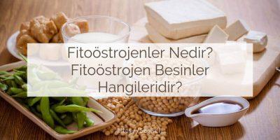 Fitoöstrojenler nedir? Fitoöstrojen yiyecekler hangileridir? fitoöstrojen besinler